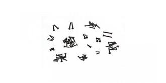 Electrix Schrauben Set allg. (64-teilig)
