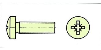 Schraube Kunststoff M 6.0x 60mm Zylinderkopf 10St