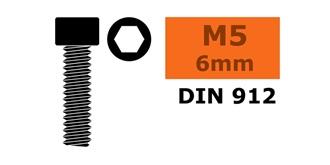 Schraube M 5,0x  6mm Zyl.kopf-Gewind..