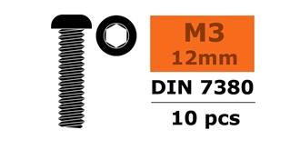 Schraube M 3,0x 12mm Linsenkopf (Inbus) 10St