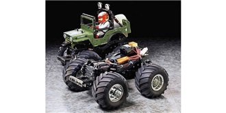 RC KIT Wild Willy 2  1:10 E Monster 2WD WR02  10..