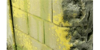 Vallejo WE Moss and Lichen Effect 40ml
